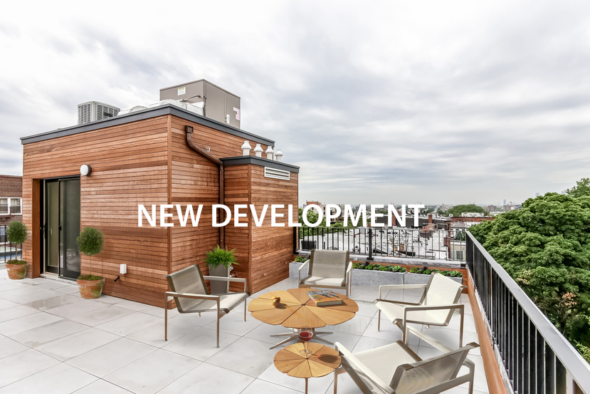 006-staged_roof_deck-2923412-small